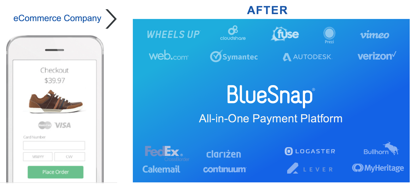 BlueSnap - the payment processing engine that won't ever need supplementing